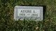 Ayche L Draine