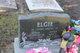 Profile photo:  Leighton R Elgie