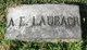 Profile photo:  A E Laubach