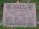 James Alexander Aikens