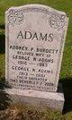 Profile photo:  Beverley J Adams