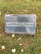 Josephine L <I>Springer</I> Higgins