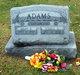 Profile photo:  Irvin E Adams