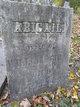Profile photo:  Abigail Bull