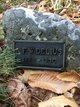 A F W Delius