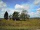 Deer Lake Cemetery
