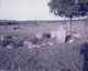 Badgett Family Farm Cemetery