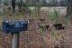 Ashcraft-Heaton Cemetery