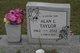 Alan L Taylor