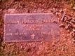 Allan Harold Carlson