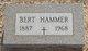 "Profile photo:  Albert ""Bert"" Hammer"