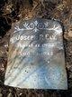 Joseph Rogers Ely
