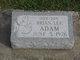 Brian Lee Adam