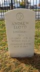 Profile photo:  Andrew Lloyd