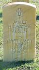 James Hiawatha Austin