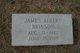 James Albert Brinson