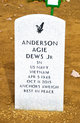Profile photo:  Anderson Agie Dews, Jr