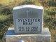 Sylvester Bray