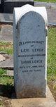 Levi Lever