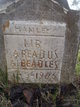 Areadus A Beadles