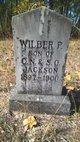 Wilber P Jackson