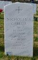 Nicholas Andrew Garelis