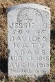 Jessie M Adams