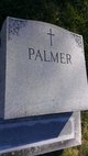 Profile photo:  Palmer