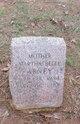 Martha Belle Abney