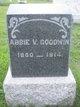 Profile photo:  Abbie V Goodwin