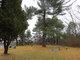 Strobel Cemetery