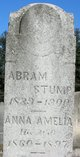 Profile photo:  Abram Stump