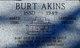 """Profile photo:  Bertram A. """"Burt"""" Akins"""