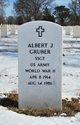 Profile photo:  Albert J Gruber