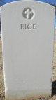 Profile photo:  Rice