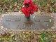 Odena Maxine <I>Flowers</I> Adair