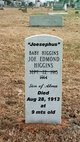 Joe Edmond Higgins