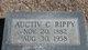 Profile photo:  Auctiv C Rippy