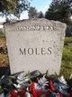Profile photo:  Moles