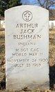 Profile photo:  Arthur Jack Bushman