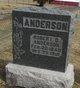Robert Q Anderson