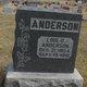 Lois C Anderson