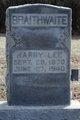 Harry Lee Braithwaite