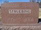 Albert D. Struebing