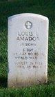 Louis L. Amador