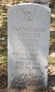 Profile photo:  Cleveland Acocks