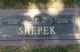 Margaret L. Shepek
