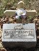 Profile photo:  Baby Cramsey