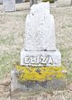 Eliza <I>McClure</I> Newhouse