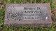 Henry Derries Andrews